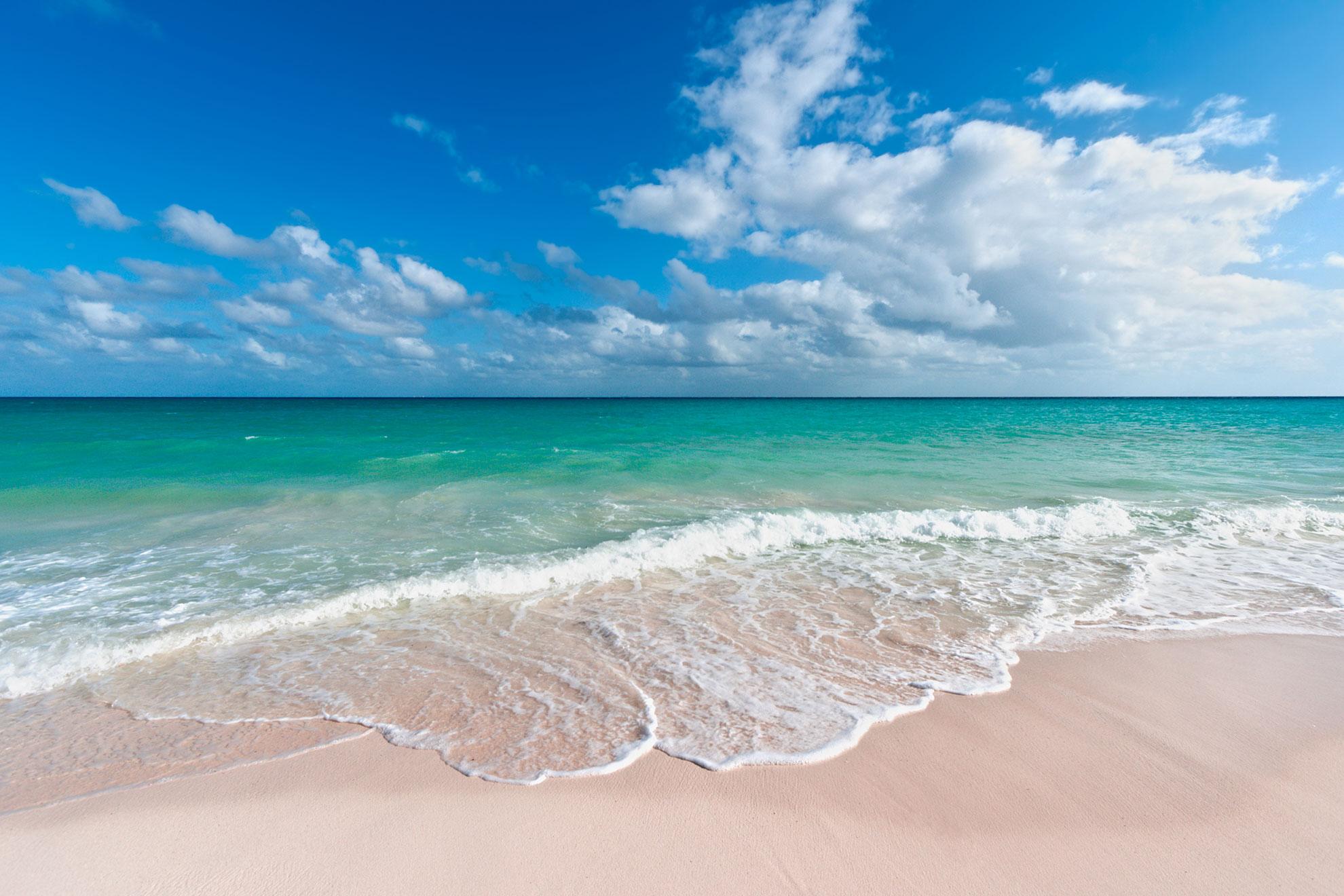 Morze i plażą