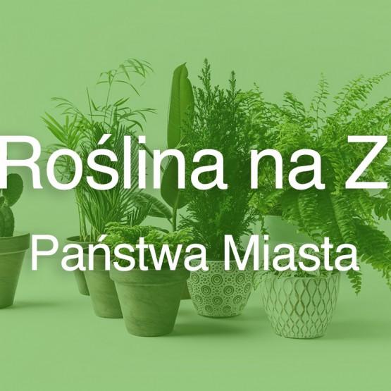 Roślina na Z